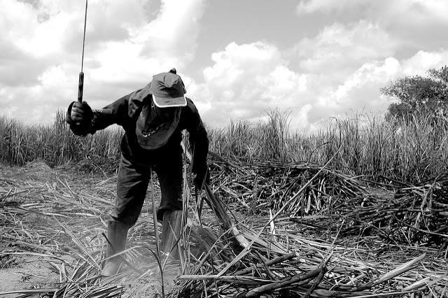 Mudanças nas leis do trabalho rural podem legalizar escravidão no Brasil