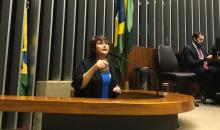ANDES-SN participa de audiência na Câmara Federal em homenagem ao dia do professor