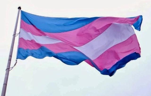 Dia da visibilidade de travestis e transexuais: Adusb em defesa do respeito à identidade de gênero